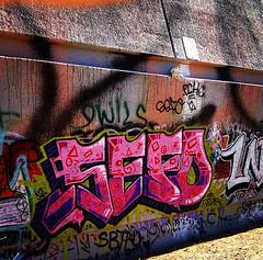 sefo graffiti (blvckpxwer) Tags: graffiti losangeles aloe ruins pch wise livy satyr scoot cosby reptar sigue presto belor egadz aeons hags sefo damit abys abyz onetooth gmale pchm pchk worie fatsoe pchf bewst roleks pchclub onetoof pchkrew pchgraffiti pchcrew egadzer