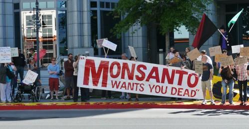 Monsanto 003