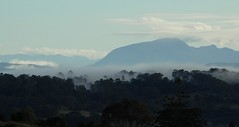 Mt Burrell... (dustaway) Tags: mountain nature fog landscape countryside scenery northernrivers nightcapnationalpark nightcaprange morninglandscape sphinxrock mtburrellblueknob