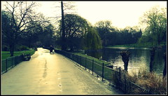 St. James park (SDB79) Tags: park street parco london natura londra lanscape