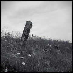 Wistful Leanings (spodzone) Tags: wood people blackandwhite plants art nature grass lines composite composition manipulated fence square photography scotland flora dynamic emotion space aspiration places diagonal equipment negativespace filter zen duotone simple toned contrasts portpatrick tranquil stacked dilapidated bluegreen airy lightanddark