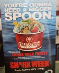 Shark Week Ice Cream Promo? (earthdog) Tags: food moblog poster word cellphone samsung advert fakefood discoverychannel sharkweek 2013 stonecoldicecream androidapp flickrandroidapp:filter=none samsunggalaxys4 samsungsphl720