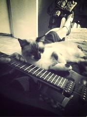 Guitar..!! (_November_) Tags: mammothfilter