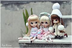 Claire, Brienne and Misa (Au Aizawa) Tags: rabbit bunny fashion japanese dolls chibi dal pullip risa usagi merl rockgirl hirako pinkversion romanticalice