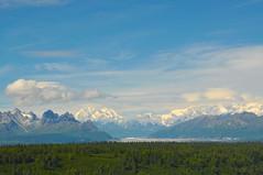 Mount Mckinley Range ( Overlook Point View ) (faungg's photos) Tags: travel blue trees vacation sky usa green nature landscape us scenery scenic ak 旅游 风景 自然 snowcappedmountains 美国 阿拉斯加 自驾游 mckinleyrange 麦金利山脉