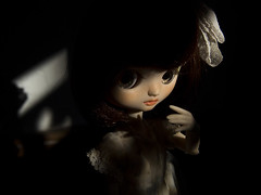 Poppy in shadows #03