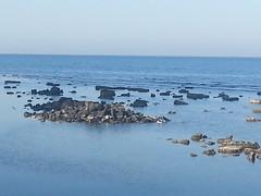 During Low Tide, Jeddah (aswaqbilaqa) Tags: jeddah