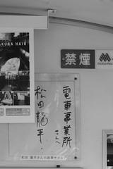 松田龍平 画像8