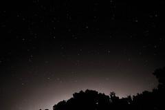Night Sky (MrAaronH) Tags: trees sky black night stars town nikon glare horizon tripod universe taunton d3200