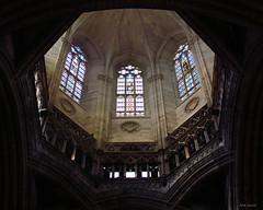 Catedral de Barcelona (almdoquesev_) Tags: barcelona espaa church arquitetura architecture canon spain espanha europa europe cathedral catedral ceiling cannon catalunya es teto allg santaeulalia igraja sx30 almdoquesev