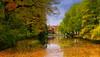 Herbst in Detmold (Konrad Steidel (Thanks for over 1,30 Million views) Tags: filmfree eperke creativemindsphotography slicesoftime flickrstruereflection1 flickrstruereflection2 flickrstruereflection3 flickrstruereflection4 inspiringcreativeminds