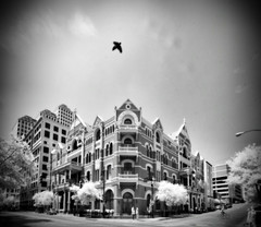 Happy Halloween - The Haunted Driskill Hotel (mr3wan) Tags: bw austin ir texas gritty historic haunted spooky infrared modified ghosts dir happyhalloween hoya ghastly etherial deaths haunts spooks r72 2013 errir