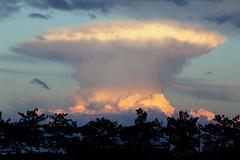 Nuvola fungo (raffaphoto©) Tags: november italy cloud clouds landscape italia marche civitanovamarche novembre2013 nuvolafungo cumulonenbo