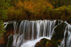 4363 The waterfall at Jiuzhaigou in autumn--Sichuan Province , China . (ngchongkin) Tags: china waterfall sichuan jiuzhaigou planetearth prophoto beautifulearth coolshot prestigephotography naturespoetry earthasia soloreflex naturesprime perfectioninpictures photographyforrecreation photographyforrecreationgoldaward photographyforrecreationsilveraward aggroup thebestofbeautifulearth masterclassexhibition administrationexquisite masterclassaward masterclasselitegroup rainbowofnaturelevel1 opticalexcellenceaward batslair cwautumncolors opticalexcellenceawardlevel2 administrationexquisitel2 administrationexquisitel3 dragonswordawardl2 dragonawordawardl1 administrationexquisitel4 dragonswordawardl3 administrationexquisitel5 dragonswordmasterpiecesl4