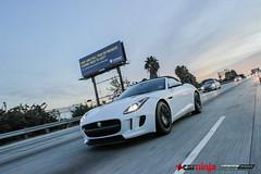 Jaguar F-Type (MMLAurelius Images) Tags: cruise car speed ninja bmw jaguar m3 lamborghini meet gallardo superleggera purist ftype motor4toys aventador lp570 lp700