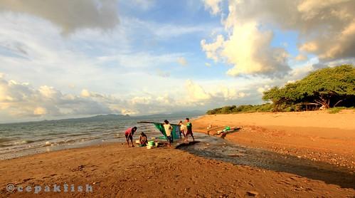 Pencari-Nener_Pantai-Lusiana-Kupang