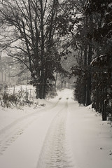 Winter Walks (i.am.KPhotography.) Tags: trees winter white snow nature canon landscape photography rebel roads simple gravel canonrebelxsi