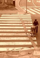 EN LA SENDA. MIRAFLORES. PER. (tupacarballo) Tags: street man southamerica sepia canon calle lima streetphotography photojournalism per anciano miraflores hombre anthropology urbanphotography antropologa afilador amricadelsur documentaryphotography g15 sendapeatonal fotografadocumental tupacarballo canonpowershotg15