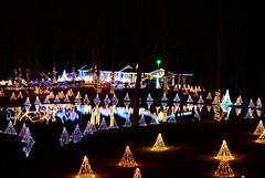 Christmas lights (chili5558) Tags: christmas festive lights southcarolina d800 nikon2470mmf28