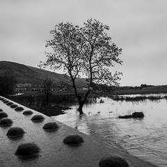 Hilfoots Floods - 02 (ibriphotos) Tags: alva wet rain flooding flood roadclosed clackmannanshire tillicoultry hillfoots marchglen