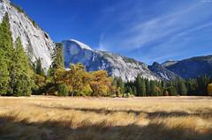 Yosemite Valley (Iyhon Chiu) Tags: california nature unitedstates yosemite halfdome yosemitenationalpark   yosemitevalley       2013   d7000