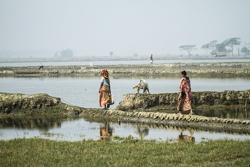 Women walking by the pond in Khulna, Bangladesh. Photo by Felix Clay/Duckrabbit.