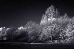 beyond the trees (Jon Downs) Tags: trees light bw cloud white black tree art nature clouds digital canon fence downs landscape ir photography eos grey photo high jon artist photographer dynamic image path buckinghamshire gray picture reserve pic photograph infrared stony range hdr stratford stonystratford ousevalleypark 400d jondowns stonystratfordnaturereserve