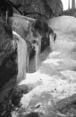 Om35ecr_330scan_img_308 (Jari Savijrvi) Tags: ice gorge talvi maisema mets luonto j jms olympus35ecr synninlukko rolleiprx400 vision:sky=0633 vision:outdoor=0959