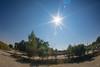 sun flare (SpotShot) Tags: sony a7 ilce7 sonya7 zenitar 16mm f28 16 zenitar16mmf28 fisheye taubergiesen flare sun sonne