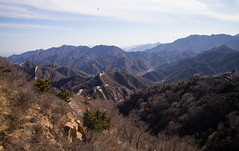At the Great Wall (romanboed) Tags: 八达岭 leica m 240 summicron 28 asia china beijing badaling yanqing great wall spring blue sky travel monument architecture