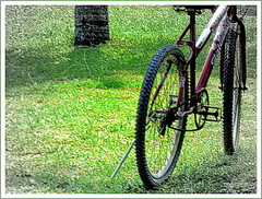 Bike (o.dirce) Tags: bike bicicleta odirce
