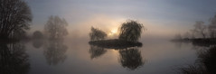 3179--3183-1 (gcu_sketcher) Tags: xt1 xf1655 pano panorama ptgui pond water mist misty morning dawn daybreak sunrise spring somerset trees reflections island