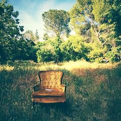 a note was left (Maureen Bond) Tags: iphone iphoneblowout light morninglight hike chair trees grass golden green blue sky couds hot spring note ca maureenbond