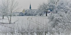 Le chemin (blogspfastatt (+4.000.000 views)) Tags: hiver winter zima blanc white ice paysage nature landcape blogspfastatt pfastatt tree arbre reiningue alsace church église path