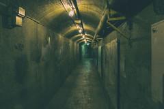 The Tunnel (A Great Capture) Tags: underground ig agreatcapture agc wwwagreatcapturecom adjm ash2276 ashleylduffus ald mobilejay jamesmitchell toronto on ontario canada canadian photographer northamerica torontoexplore casaloma tunnel dark lights