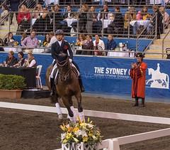 17429_Sydney_CDI_Quadrilles_0009.jpg (FranzVenhaus) Tags: athletes dressage australia equestrian riders horses ponies rug siec nsw sydney newsouthwales aus