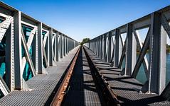 Le pont (Fréd.C) Tags: pont bridge color rail bourgogne saone france lines burgundy river train