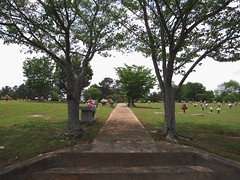 (nikkivercetti) Tags: cemetery georgia april 2017 flowers sidewalk trees path