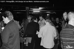 2017 Bosuil-Het publiek bij Purpendicular 5-ZW
