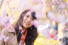 Happy young woman getting closer to cherry blossoms (Apricot Cafe) Tags: img30022 asia asianandindianethnicities canonef85mmf18usm japan japaneseethnicity kyotocity kyotoprefecture bright casualclothing charming cheerful citylife closeup day enjoyment freedom happiness horizontal humanface kyotogyoen lifestyles oneperson onlywomen outdoors photography publicpark relaxation scarf smiling springtime waistup walking weekendactivities women youngadult