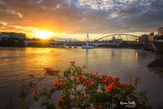 BRIS10 (Karen Duffy PhotoArt) Tags: brisbane queensland australia sunrise sun brigde goodwill bouganvillea river water boats