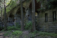 West Flank Unguarded (95wombat) Tags: old abandoned military fort overgrown lakechamplain newyork