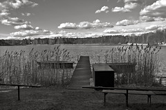 """Forest Lake in Biesenthal"" © 3.April 2017 by Silva Wischeropp aka Silva Capitana (SILVA CAPITANA) Tags: forestlake lake water nature landscape plants biesenthal blackandwhite mono monochrome monochromeart boat clouds whiteclouds sky abstract photography photo forest trees tree seagrass spring springtime walk web stage landingstage path footbridge bridge woodenbridge woodenboat reedgrass black white grey duplex darksky cloudysky beautyofnature abstraction landscapephotography swimminglake swimming meditation zen spa littleboat boats ngc berlin deutschland germany"