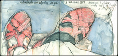 Autoretrato con zapatos rojos. 1 de abril, 2017. (Sharon Frost) Tags: shoes clarks airtravel airplanes americanairlines tucson newyorkcity passengers selfportrait journals daybooks sketchbooks sharonfrost drawings paintings travelurbansketchbooks