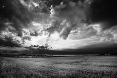 Sundowner after storm (Herr.Kaleu) Tags: black white sundowner coast clouds sun drama heiligenhafen schleswigholstein ostsee balticsea landscape
