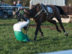 A heavy one - Luckily both horse & rider walked away (Steve Barowik) Tags: yorkraces racecourse grandstand horse jockey trainer groom cropframe saddle plate whip hunter chaser hound pointtopoint point2point stevebarowik barowik 70200mmf28vrii jorvik ebor eboracum jump fence hurdle canter hack sbofls26 nikond500 quantumentanglement wonderfulworld unlimitedphotos flickrelite dx badsworthbramhammoor hunt askhambryan