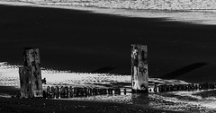 groynes (coffee robbie..PROTECTED BY PIXSY) Tags: groynes sigma150500mm sigma sea coast youghal blackandwhite bw beech nikond5100 nikon eochill eire ireland munster beach