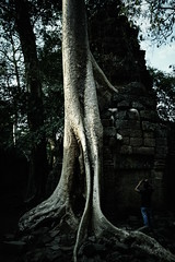 20150501_R6589_GRD4_KH (*Leiss) Tags: 2015 taprohm cambodia kh grd4 gr 28mm digital