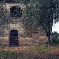 (carol murray) Tags: italy siena toscany 042817explore37