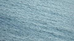 Ise Bay (Jon-Fū, the写真machine) Tags: jonfu 2017 olympus omd em5markii em5ii em5mkii em5mk2 em5mark2 オリンパス mirrorless mirrorlesscamera microfourthirds micro43 m43 mft μft マイクロフォーサーズ ミラーレスカメラ ミラーレス一眼カメラ ミラーレス機 ミラーレス一眼 snapseed japan 日本 nihon nippon ジャパン ジパング japón जापान japão xapón asia アジア asian orient oriental aichi 愛知 愛知県 chubu chuubu 中部 中部地方 nagoya 名古屋 名古屋港 名港 nagoyaport portofnagoya bodyofwater bodiesofwater 水 waterside waterfront water bay 湾 伊勢湾 isewan